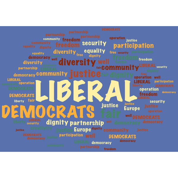 Words from the preamble to the Liberal Democrat constitution