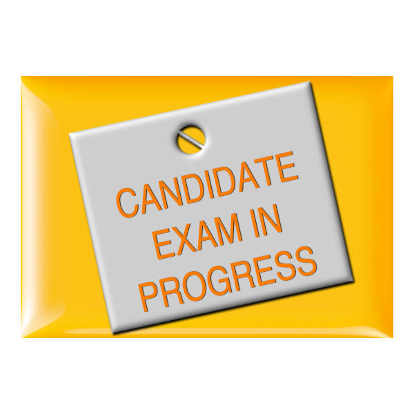 Candidate Exam In Progress