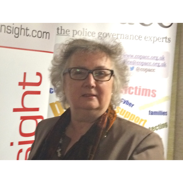 Helen Korfanty attending a workshop at CoPaCC
