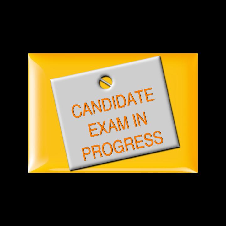 Candidate Exam In Progress