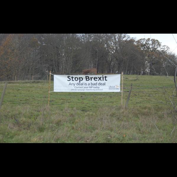 Brexit banners (East Suffolk Lib Dems)