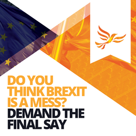 Demand Better Brexit Dec 2018 (by Liberal Democrats)