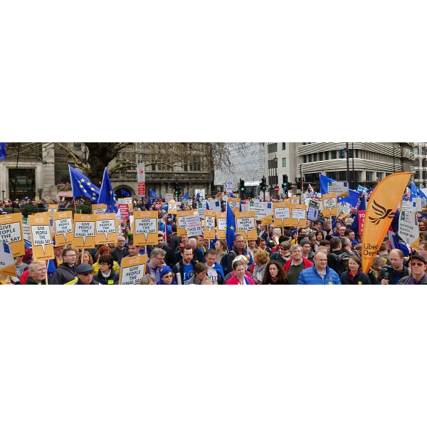 March March 2019 Lds (Liberal Democrats)