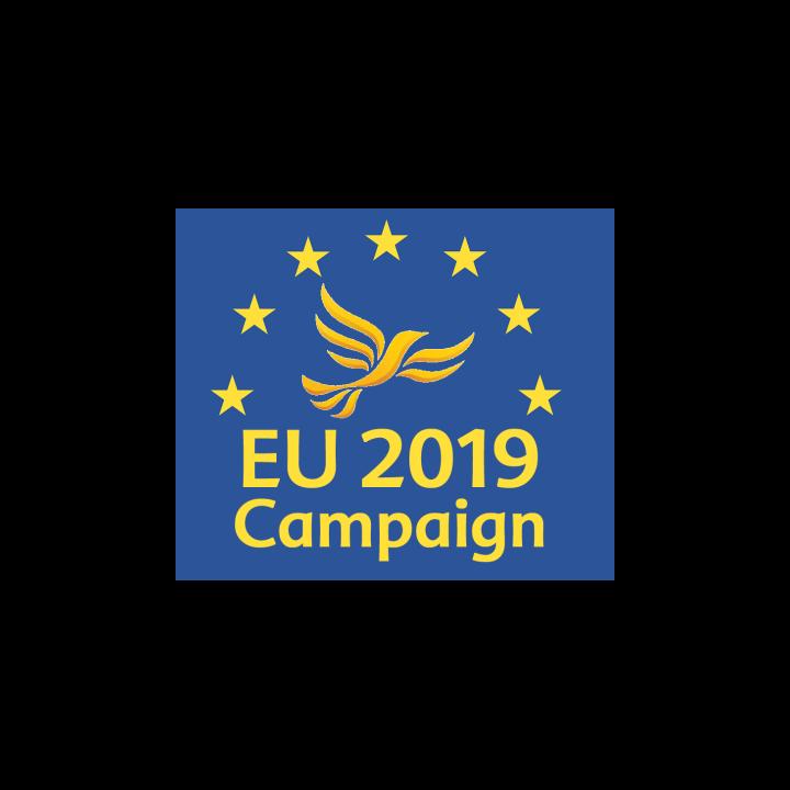EU campaign 2019