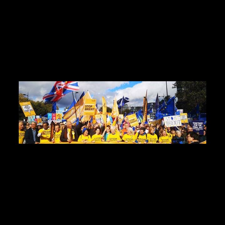 Oct PV LD s March (Lib Dems.org)